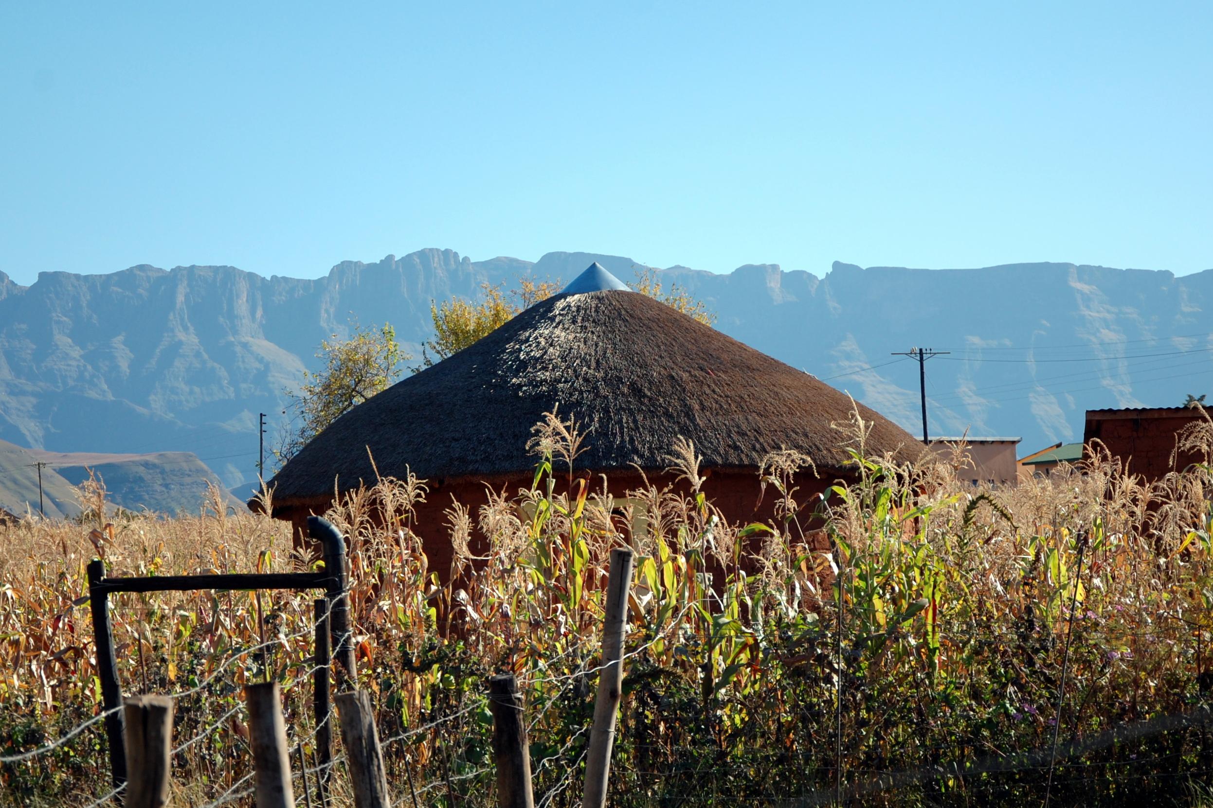 Zulu-Hütte mit Reetdach vor dem berühmten Amphitheater.